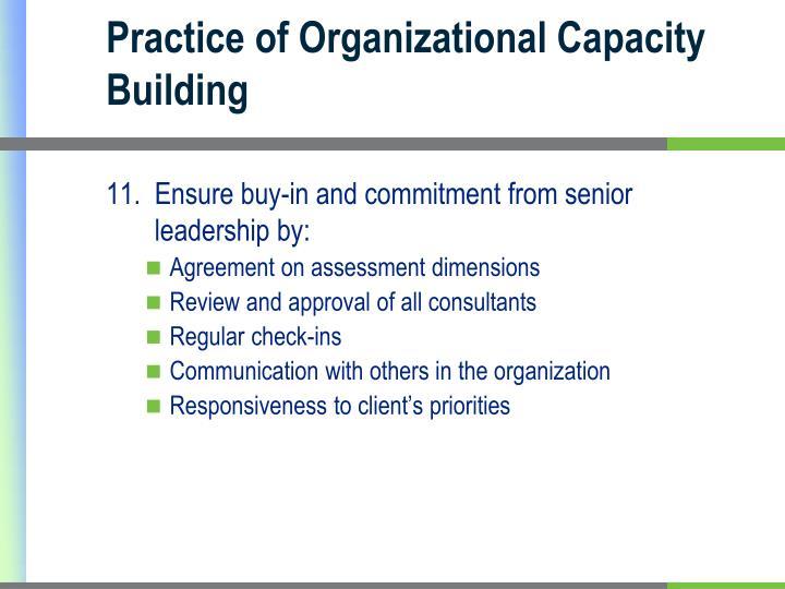 Practice of Organizational Capacity Building
