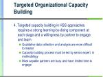 targeted organizational capacity building1
