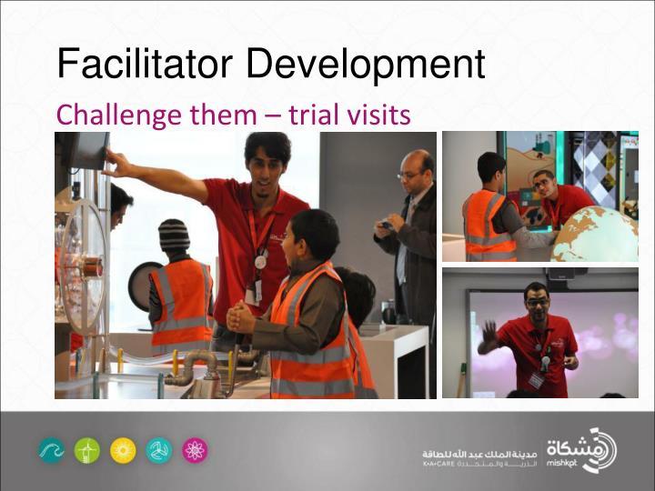 Facilitator Development