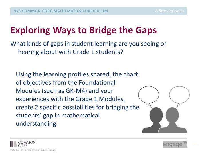 Exploring Ways to Bridge the Gaps