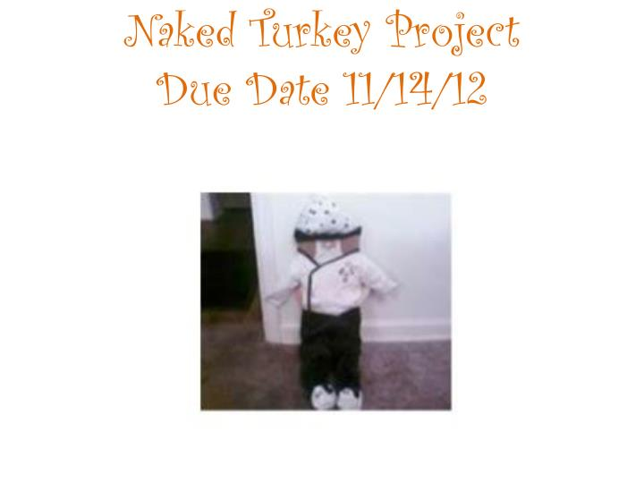 Naked Turkey Project