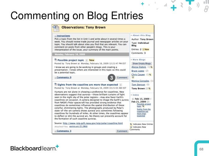 Commenting on Blog Entries