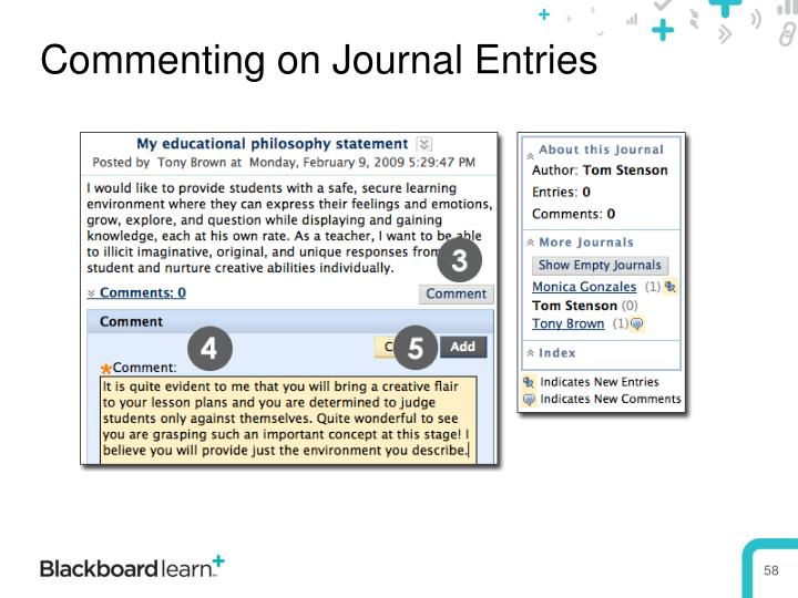 Commenting on Journal Entries
