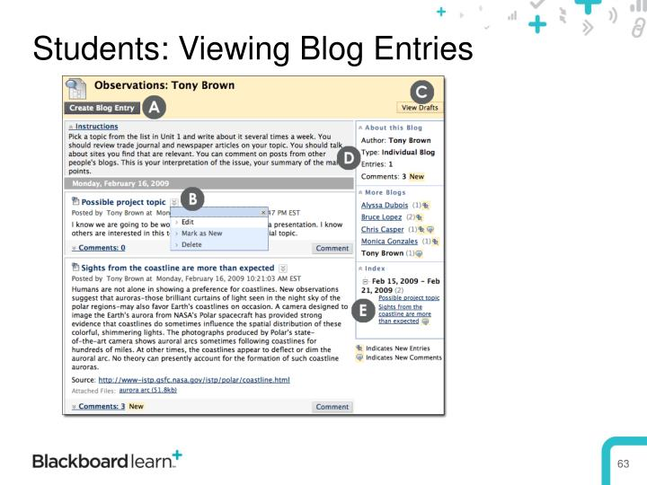 Students: Viewing Blog Entries