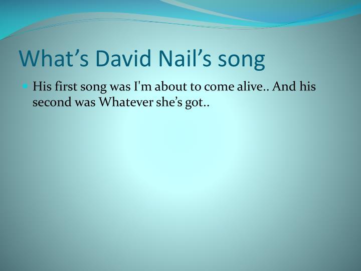What's David Nail's song