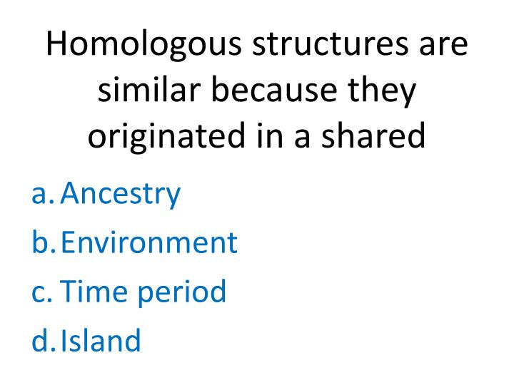 Homologous structures are similar because they originated in a
