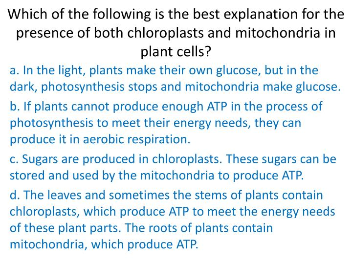 Which of the following is the best explanation for the presence of both chloroplasts and mitochondria in plant cells?