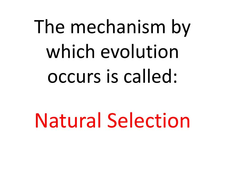 The mechanism by which evolution occurs is called: