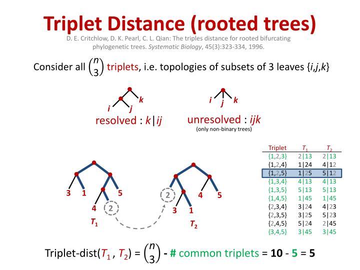 Triplet Distance (