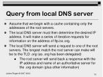 query from local dns server