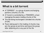what is a bit torrent