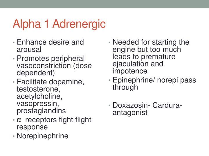 Alpha 1 Adrenergic