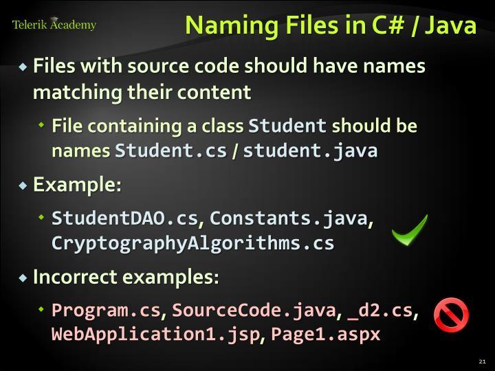 Naming Files in C# / Java