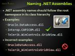 naming net assemblies