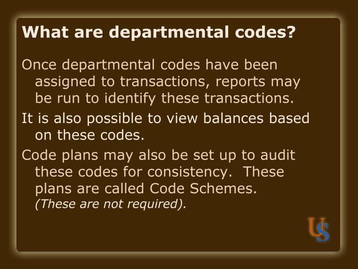 What are departmental codes?