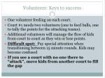 volunteers keys to success