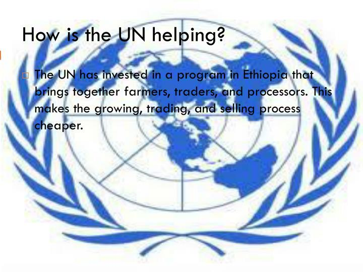 How is the UN helping?