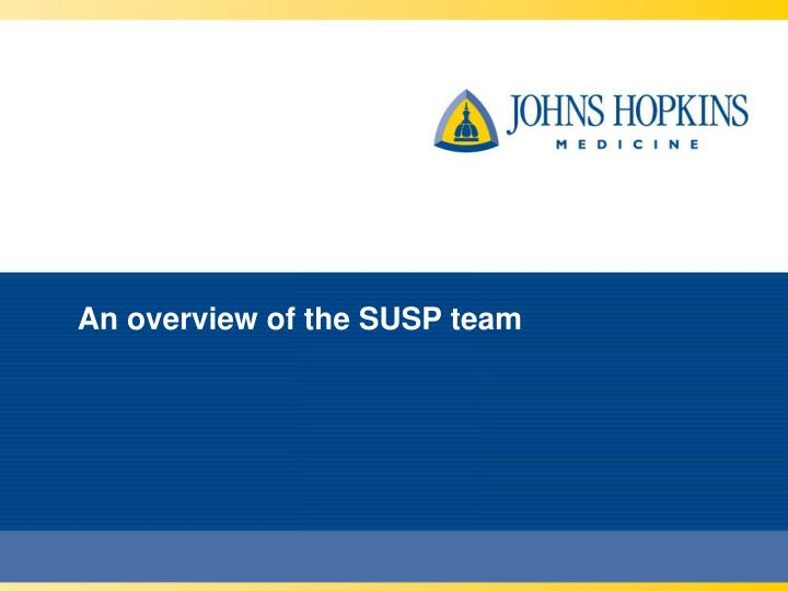 An overview of the SUSP team
