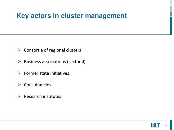 Key actors in cluster
