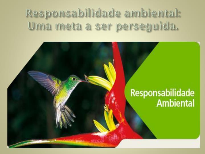 Responsabilidade ambiental: Uma meta a ser perseguida.