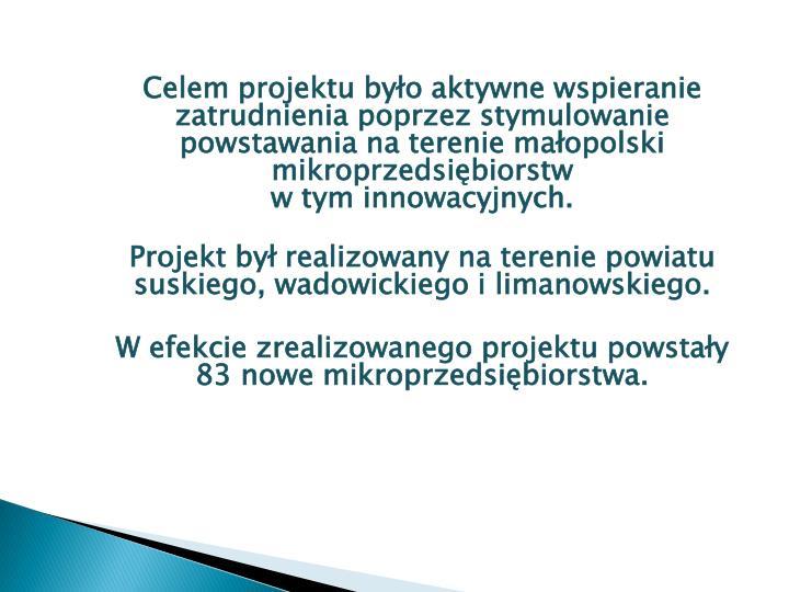 Celem projektu było aktywne wspieranie zatrudnienia poprzez stymulowanie powstawania na terenie małopolski mikroprzedsiębiorstw