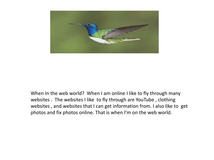 When In the web world?  When I am online I like to fly through many websites .  The websites I like ...