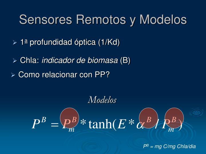 Sensores Remotos y Modelos