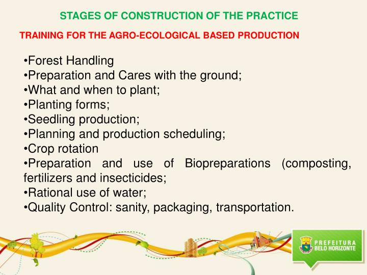 STAGES OF CONSTRUCTION OF THE PRACTICE