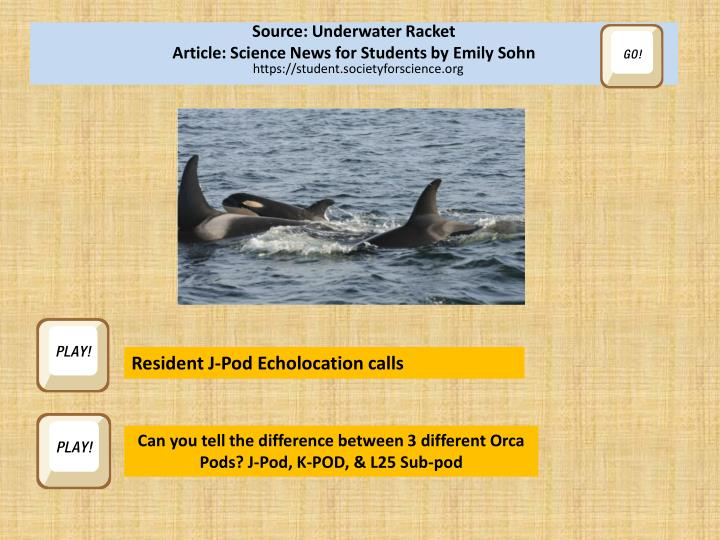 Source: Underwater Racket