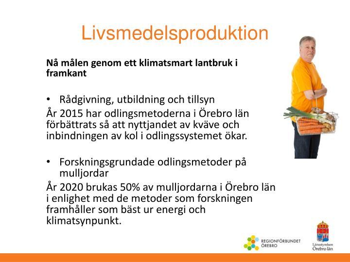 Livsmedelsproduktion