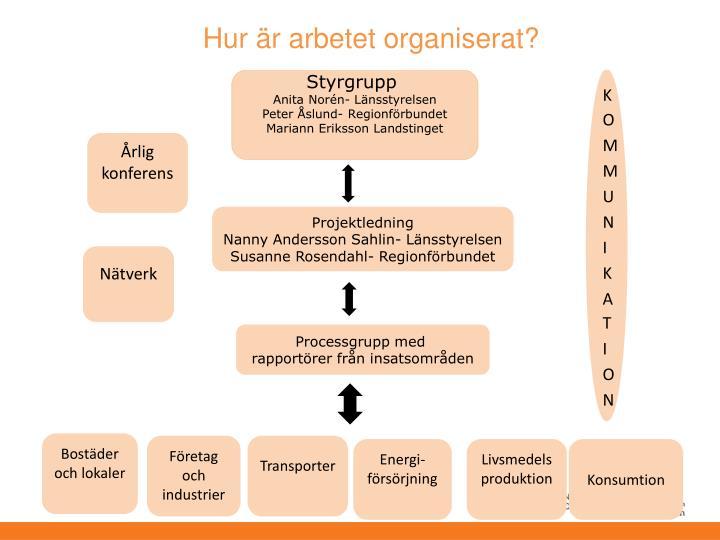 Hur är arbetet organiserat?