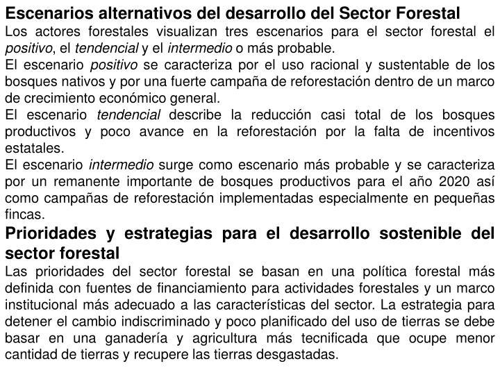 Escenarios alternativos del desarrollo del Sector