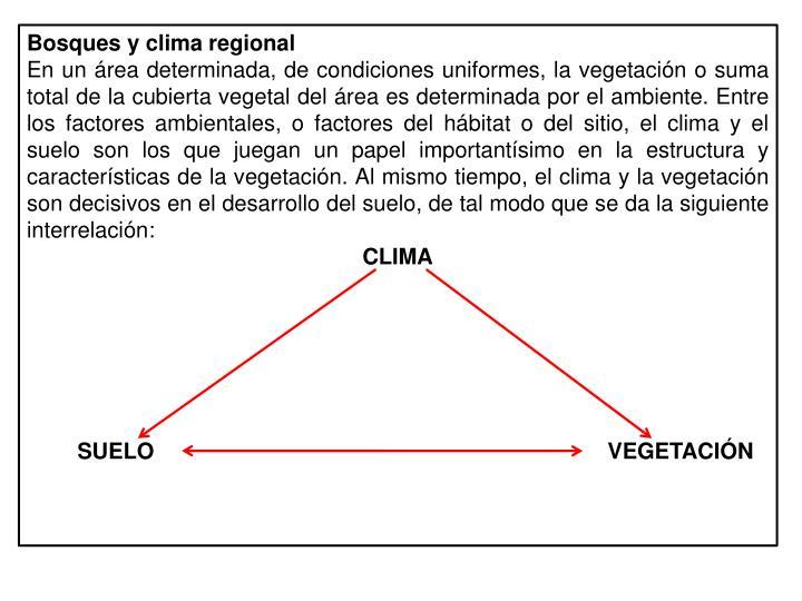 Bosques y clima regional
