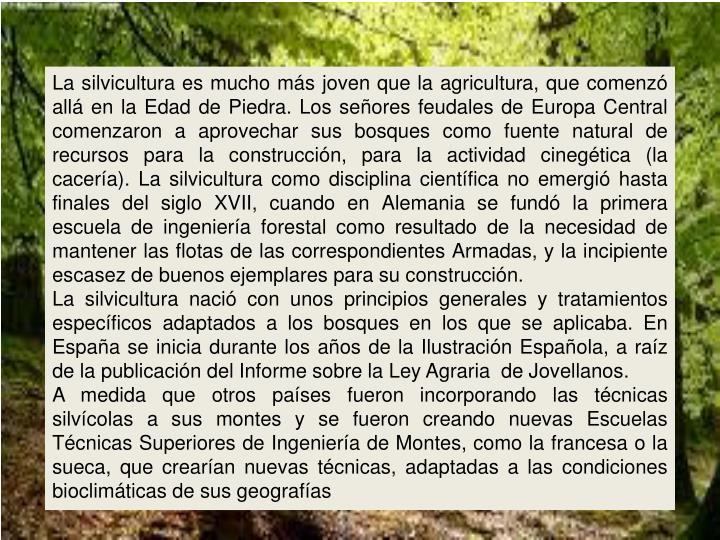 La silvicultura es mucho más joven que la agricultura, que comenzó allá en la Edad de Piedra. Los señores feudales de Europa Central