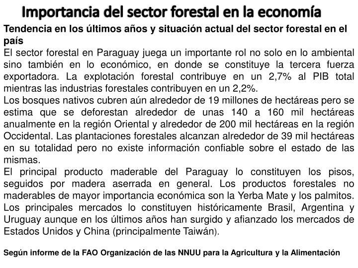 Importancia del sector forestal en la economía