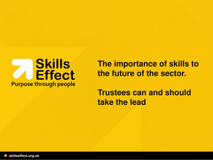 the importance of skills to the future of the sector trustees can and should take the lead
