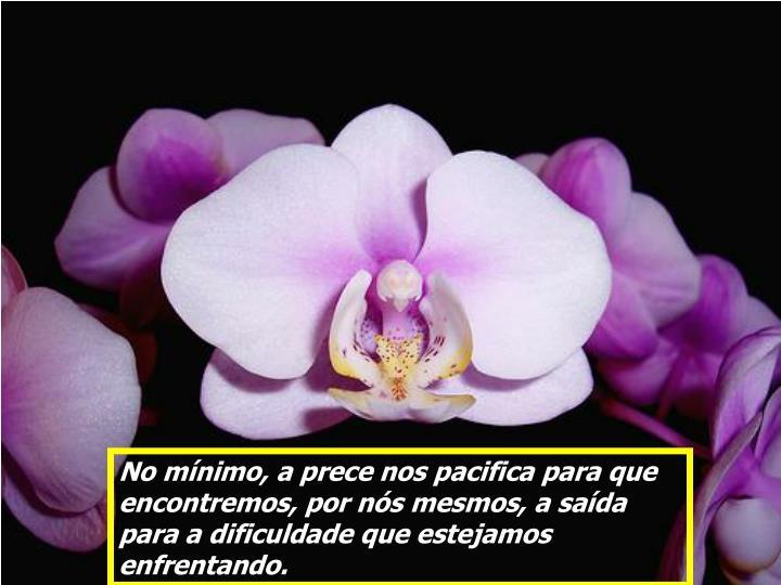 No mínimo, a prece nos pacifica para que encontremos, por nós mesmos, a saída para a dificuldade que estejamos enfrentando.