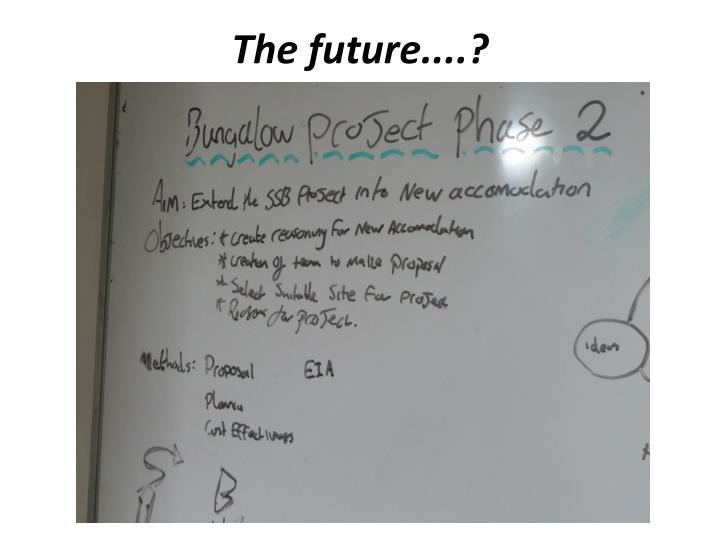 The future....?