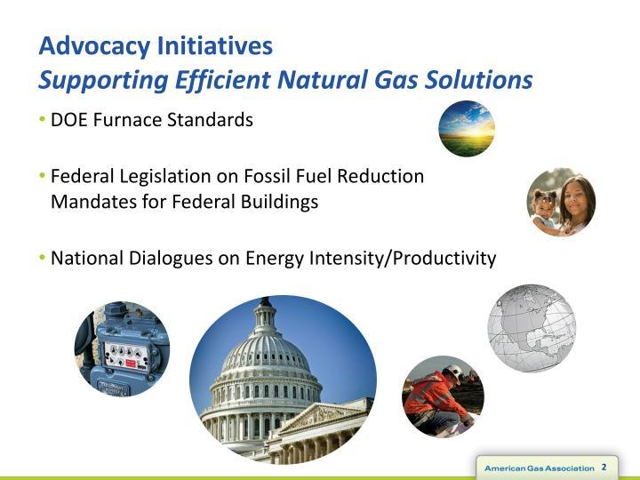 Advocacy Initiatives