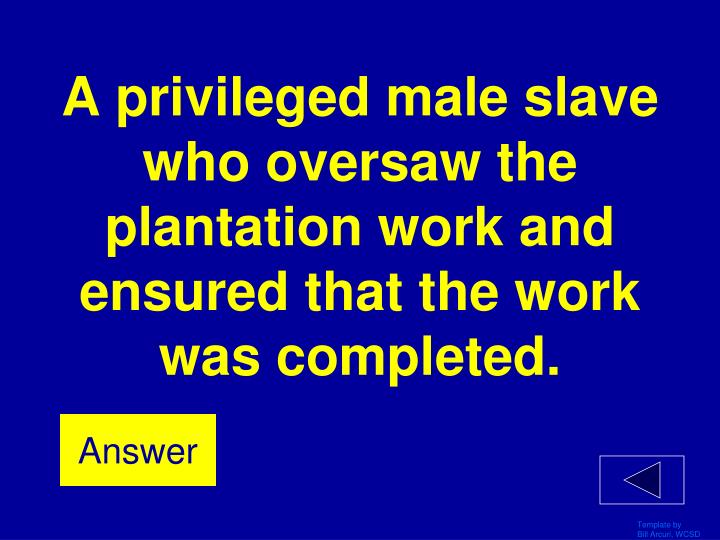 A privileged male slave who oversaw the plantation work and ensured that the work was completed.