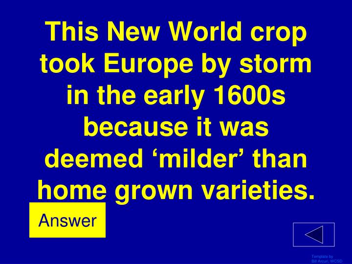 This New World crop took Europe by storm in the early 1600s because it was deemed 'milder' than home grown varieties.