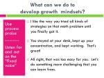 what can we do to develop growth mindsets