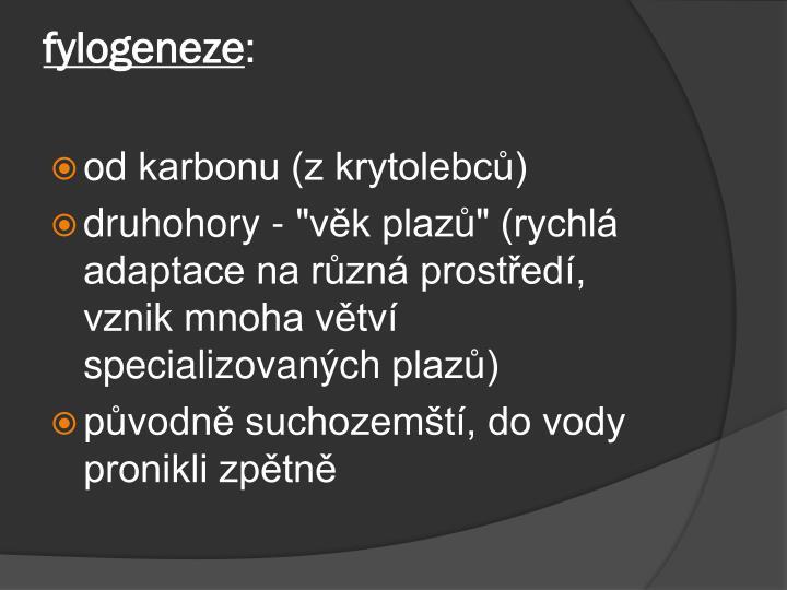 fylogeneze
