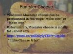 fun ster cheese