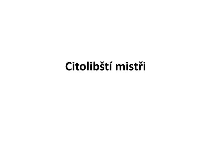 Citolibští mistři