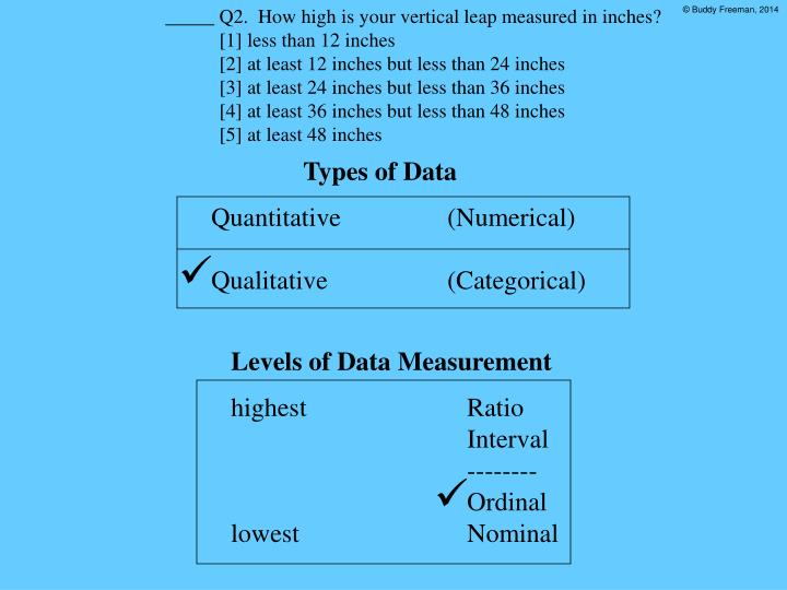 _____ Q2.  How high is your vertical leap measured in inches?