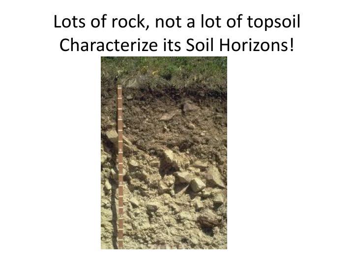 Lots of rock, not a lot of topsoil