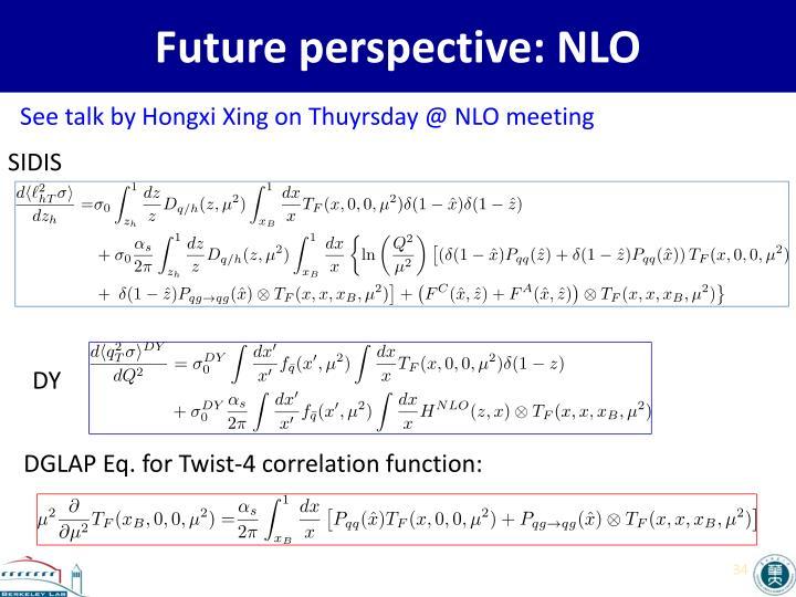Future perspective: NLO