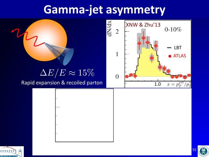 Gamma-jet asymmetry