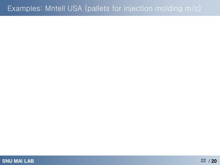 Examples: Mntell USA (pallets for injection molding m/c)